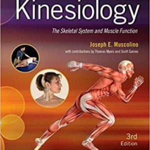Test Bank for Kinesiology The Skeletal System and Muscle Function 3rd Edition Muscolin