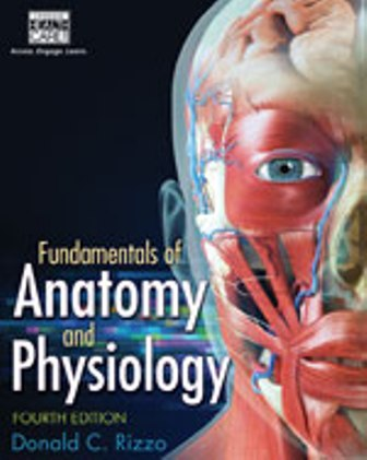 Solution Manual for Fundamentals of Anatomy and Physiology 4th Edition Rizzo