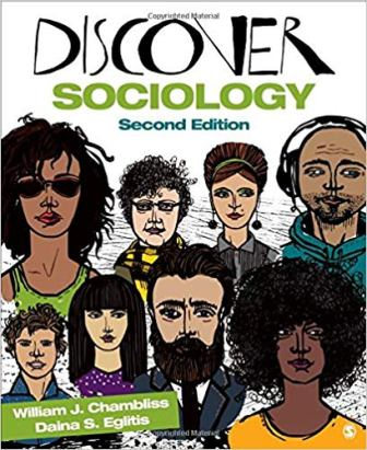 Test Bank for Discover Sociology 2nd Edition Chambliss